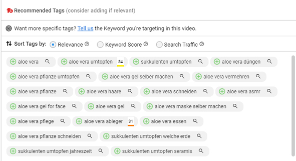 Video Tags optimieren